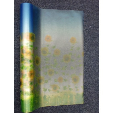 Sunflowers And Blue Sky Frosted Window Film